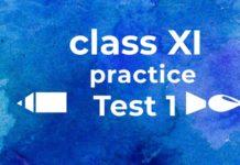 isc class xi practice test